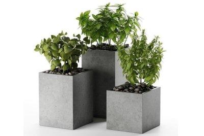 Кашпо и вазоны из бетона